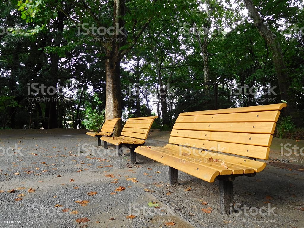 The benches on the playground after the rain - Photo