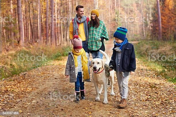 The best friend of human is a dog picture id543337484?b=1&k=6&m=543337484&s=612x612&h=rktk6 qc1yciult1 oqxvooywz8rug bcv8rcvbwbqc=