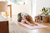 Shot of a young woman practicing her yoga routine at home
