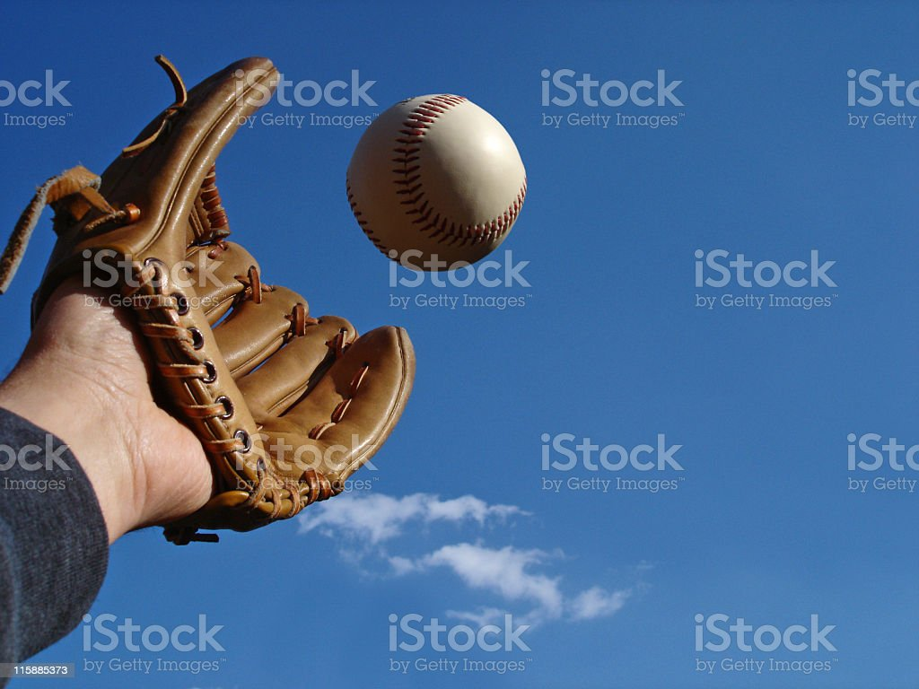 The Big Catch royalty-free stock photo