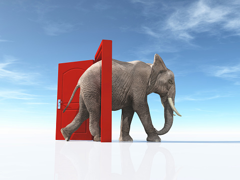 istock The big elephant enters opened door . The concept of opportunities. This is a 3d render illustration 1077219364