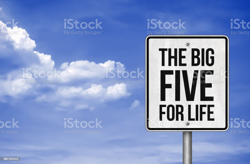 The big five for life stock photo