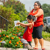 The big happy Latino, Mexican-American family. The little girl watering flowers outdoor, nearby the porch, when her mother and sisters watching. The sunny hot summer day at the parking lot nearby his house in Pennsylvania, USA