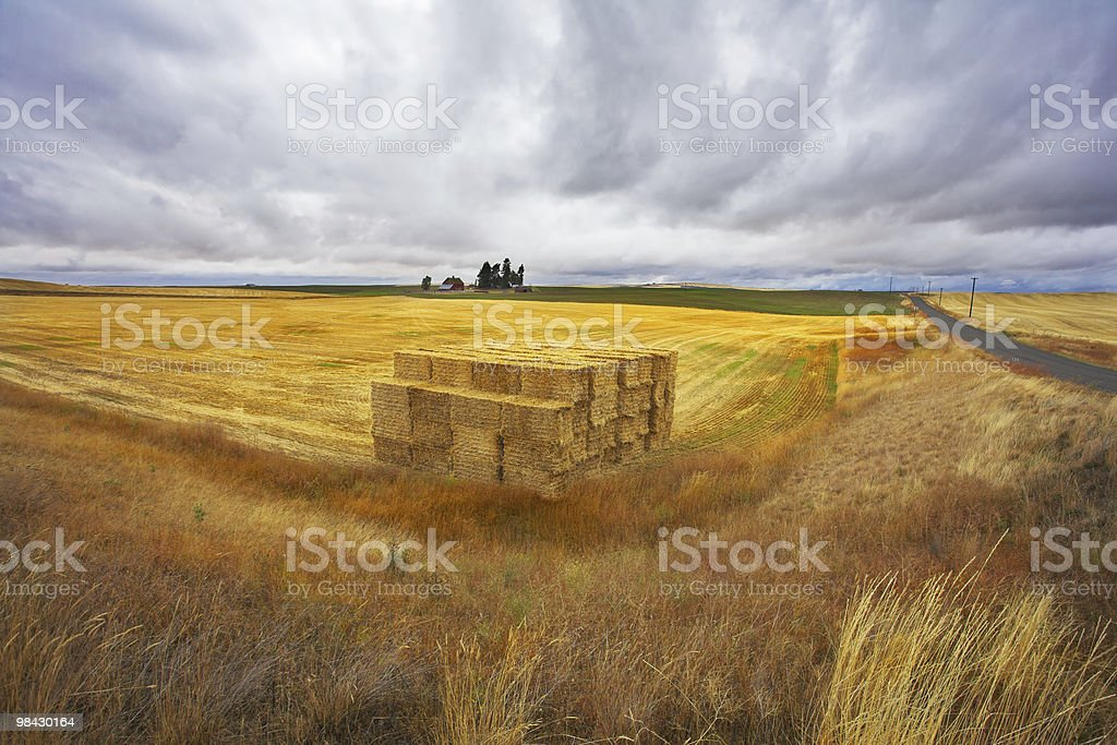 The big haystack on an autumn floor after harvesting. royalty-free stock photo