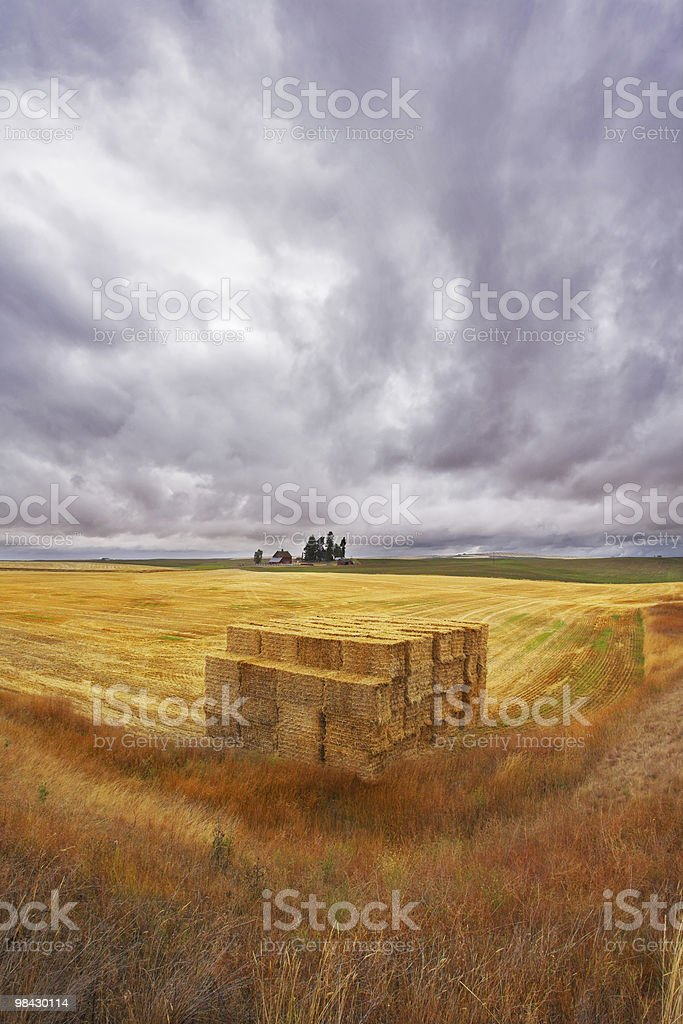 The big haystack royalty-free stock photo
