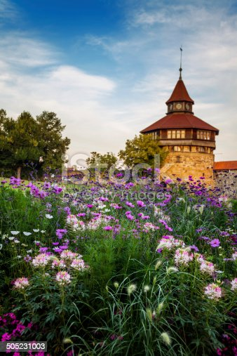 istock The Big Tower behind the flowers. 505231003