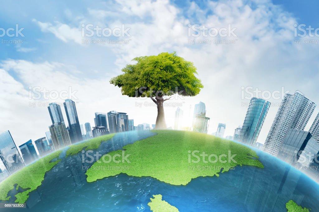 El árbol grande que crece entre los edificio moderno - foto de stock