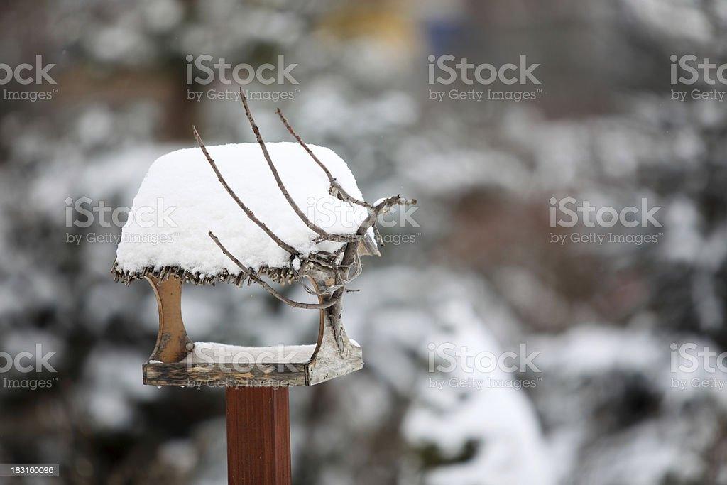 the bird feeder in winter royalty-free stock photo
