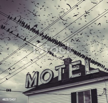 A flock of birds surround an abandoned Motel.  Toned black and white.