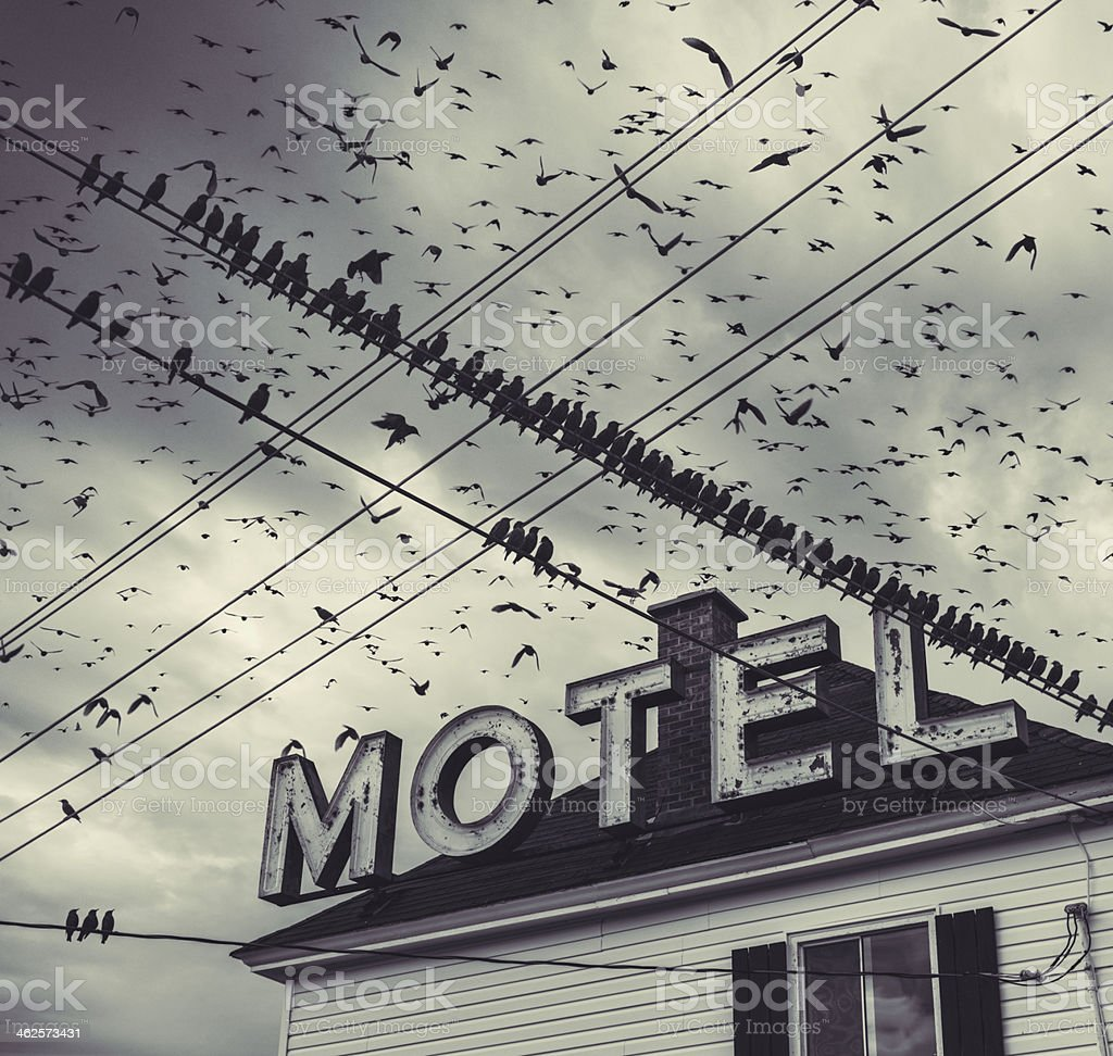The Bird Motel stock photo