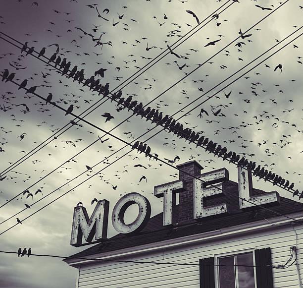 The Bird Motel stock photo