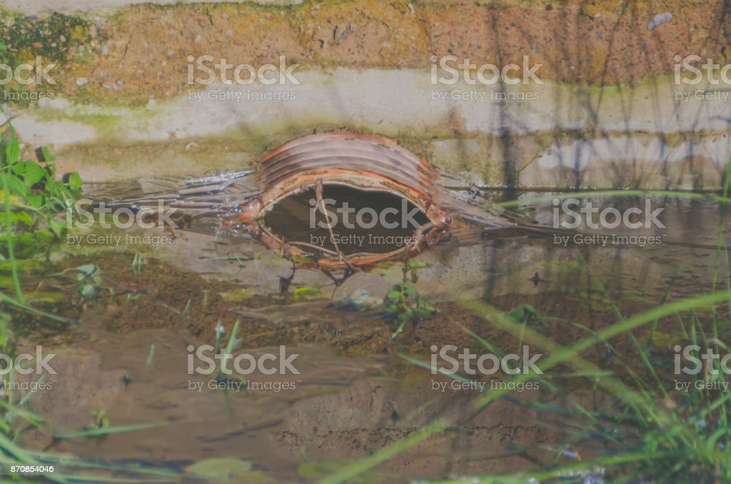 the blockage in the sewage pipe in the open air stock photo
