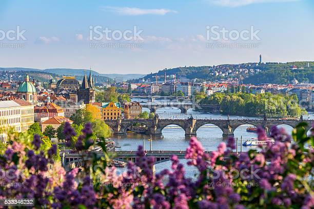 The blooming bush of lilac against vltava river charles bridge picture id533346232?b=1&k=6&m=533346232&s=612x612&h=hqrjzn1r33zhfj3abz exypvnx3dnsfc8wzm0 efx4s=