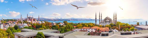 голубая мечеть, хагия софия и крыши стамбула, красивая солнечная панорама - стамбул стоковые фото и изображения