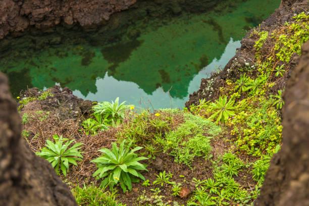 the blue natural volcanic basins of porto moniz - madeira - rain clouds porto portugal imagens e fotografias de stock
