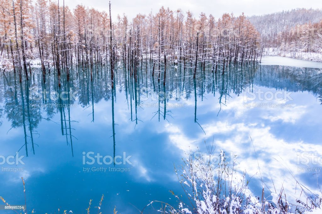 The blue pond in winter stock photo