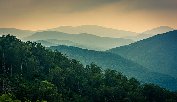 The Blue Ridge Mountains, seen from Skyline Drive in Shenandoah The Blue Ridge Mountains, seen from Skyline Drive in Shenandoah National Park, Virginia. blue ridge mountains stock pictures, royalty-free photos & images