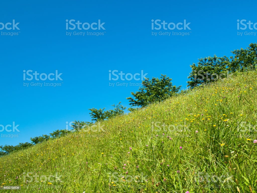 The Blue Sky stock photo