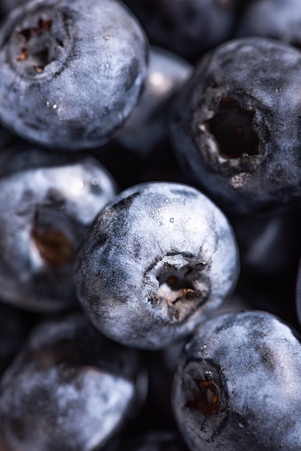 533340696 istock photo The Blueberry 1083926148
