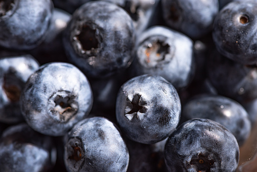 533340696 istock photo The Blueberry 1083926154