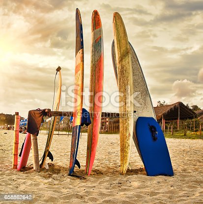 The boards for surfing for rent om the sunset beach