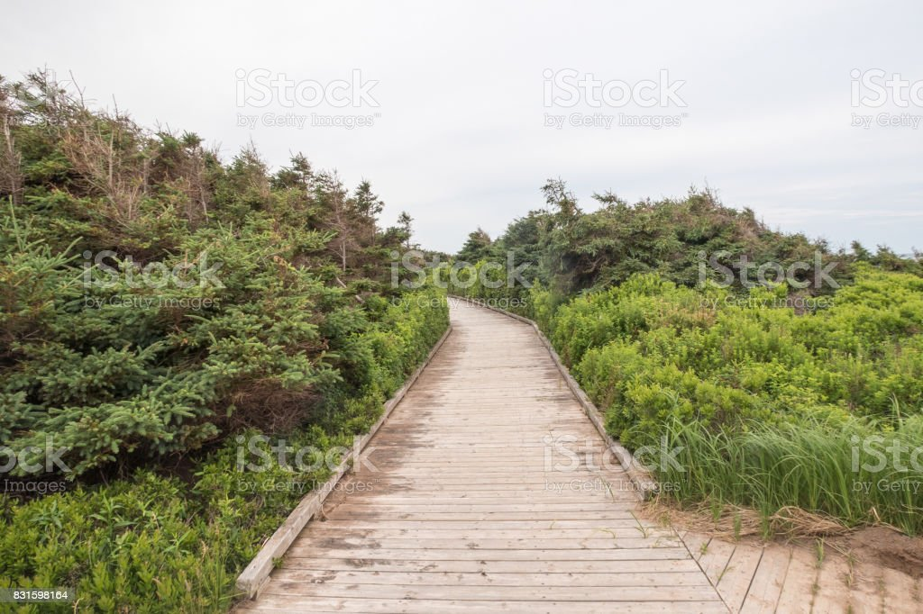 The boardwalk to the beach at Robinsons Island on PEI stock photo