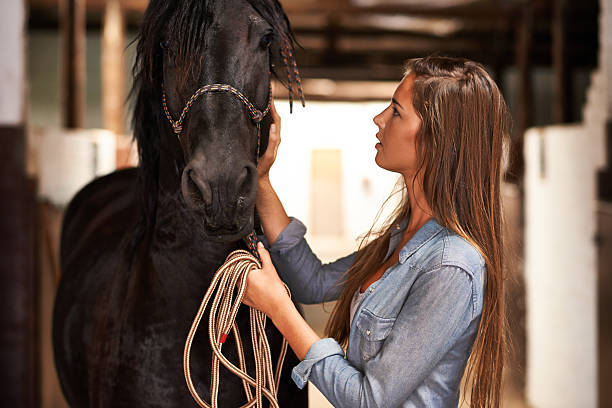 The bond between horse and rider picture id484227949?b=1&k=6&m=484227949&s=612x612&w=0&h=gatklv8yzpgn46fe7k fvngxgmvke2wwkutpeaoyv0w=