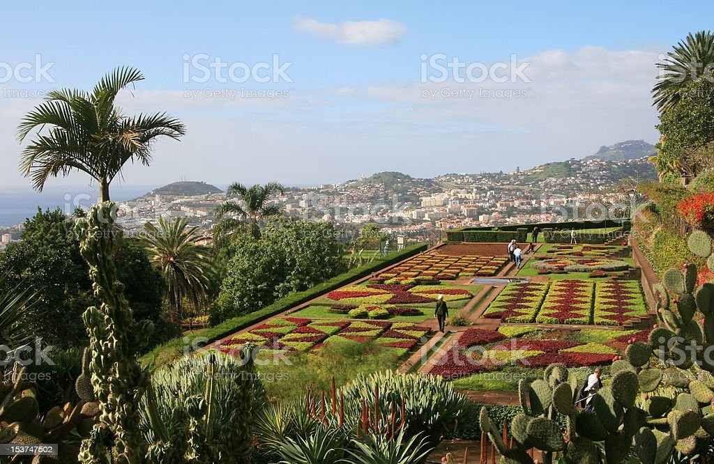 The Botanical Garden at Funchal, Madeira Island stock photo