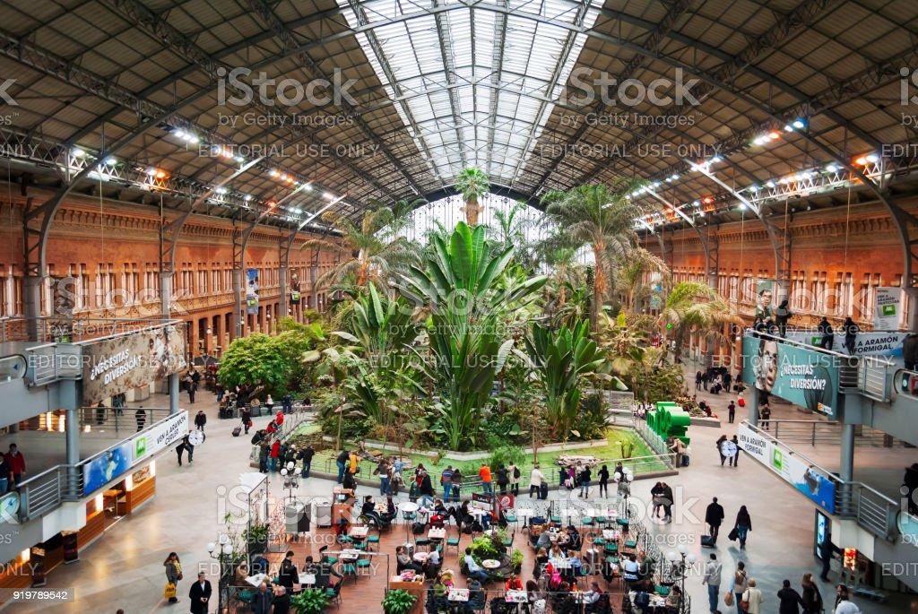 el jardín botánico dentro de la estación de Atocha en Madrid, España - foto de stock