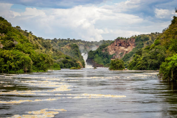 the bottom of the murchison falls waterfall - sudan stock photos and pictures