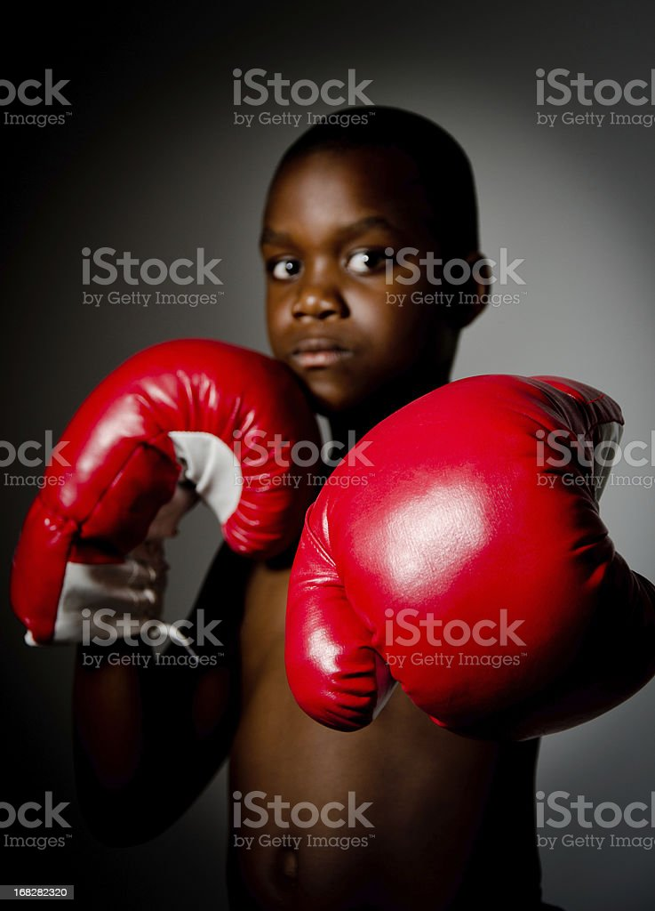 The Boxing Gloves stock photo