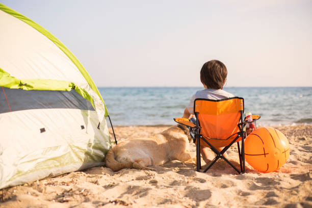 The boy and his dog is camping on the beach stock photo