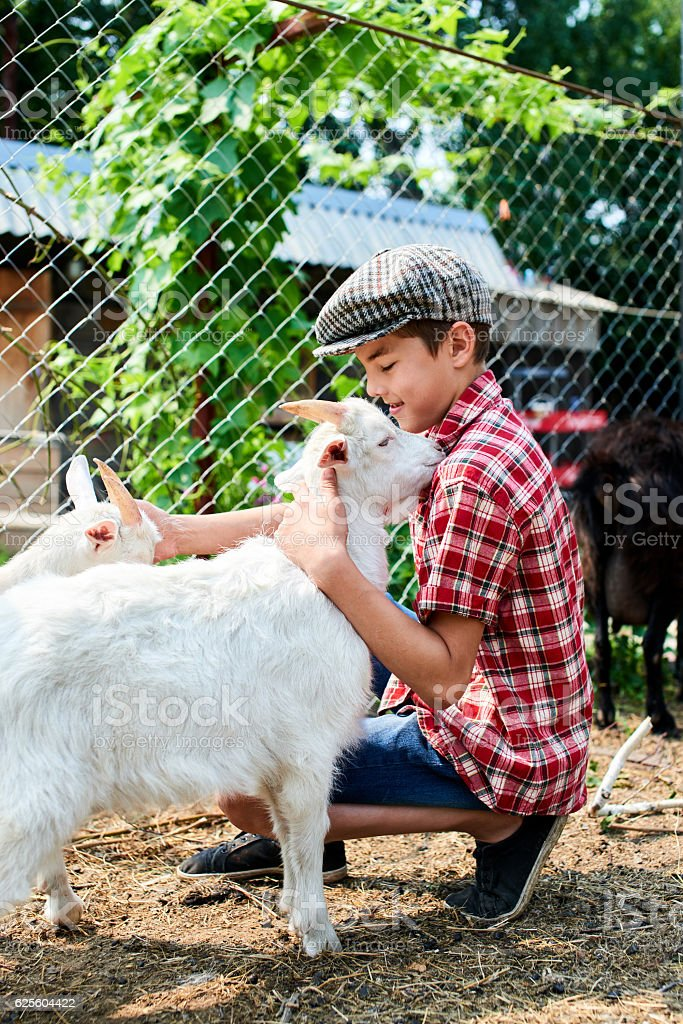 The boy is petting a baby goat at the farm – Foto