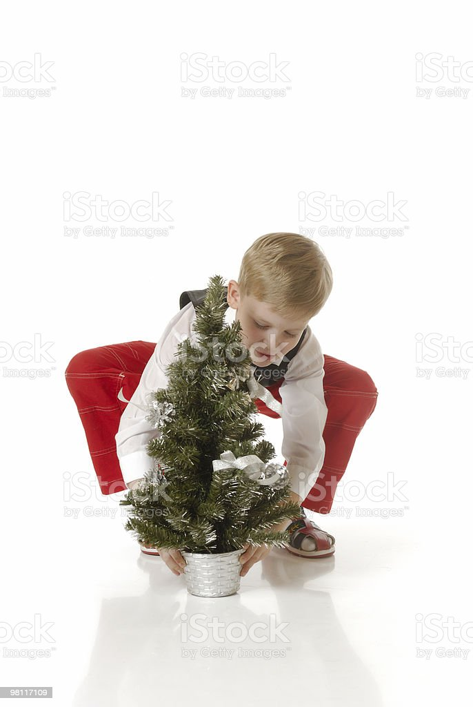 The boy with a Christmas tree royalty-free stock photo