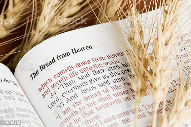 https://media.istockphoto.com/photos/the-bread-from-heaven-picture-id458566143?s=612x612