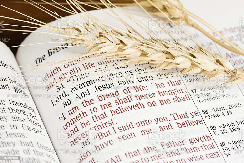 The Bread of Life royalty-free stock photo