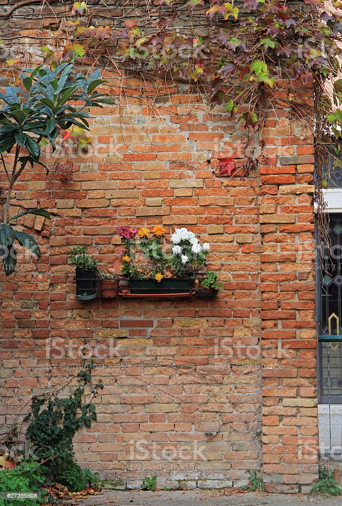 the brick wall with flowerbed stock photo