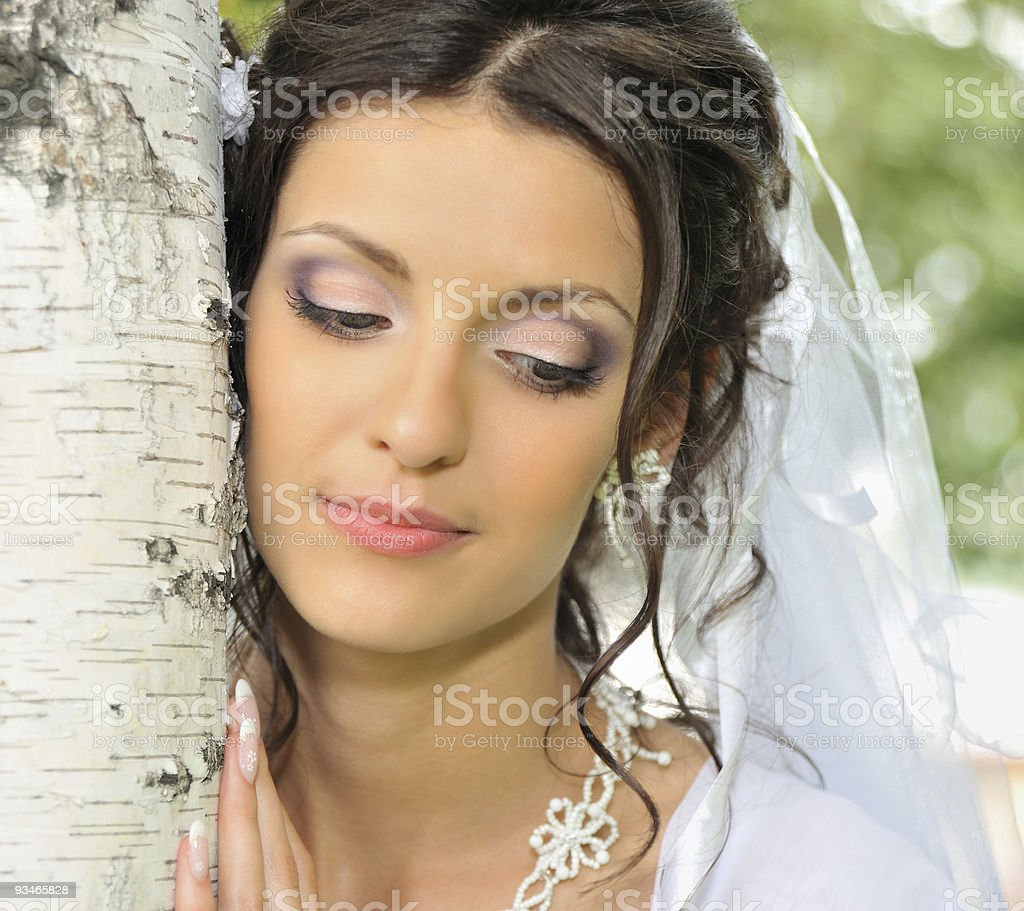The bride and a birch stock photo