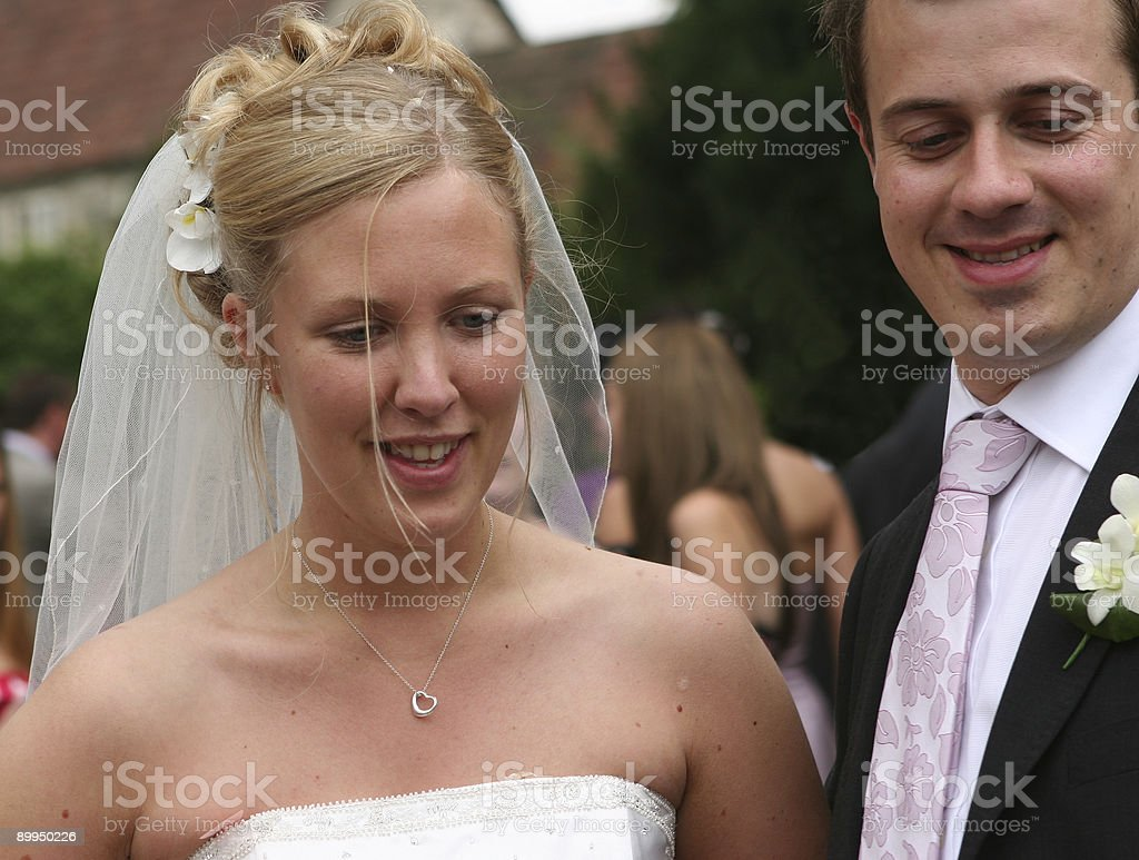 The Bride and Groom 5 royalty-free stock photo