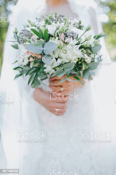The bride hold wedding bouquet in hands picture id667466058?b=1&k=6&m=667466058&s=612x612&h=cmiih tolvjgtpjpbcdvrlaj11iehkmntk1gqpi5ru8=