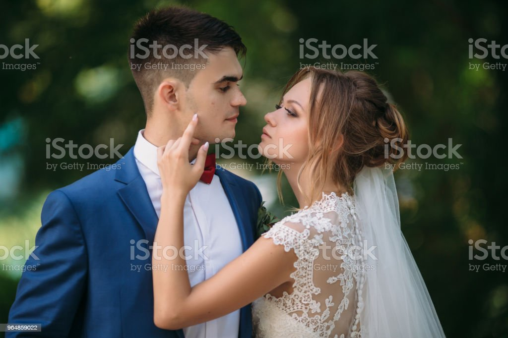 The bride in a beautiful lace dress adjusts the suit of the groom and looks at him intently. A man enjoys the beauty of his lover. Portrait of a young couple hugging in the park royalty-free stock photo