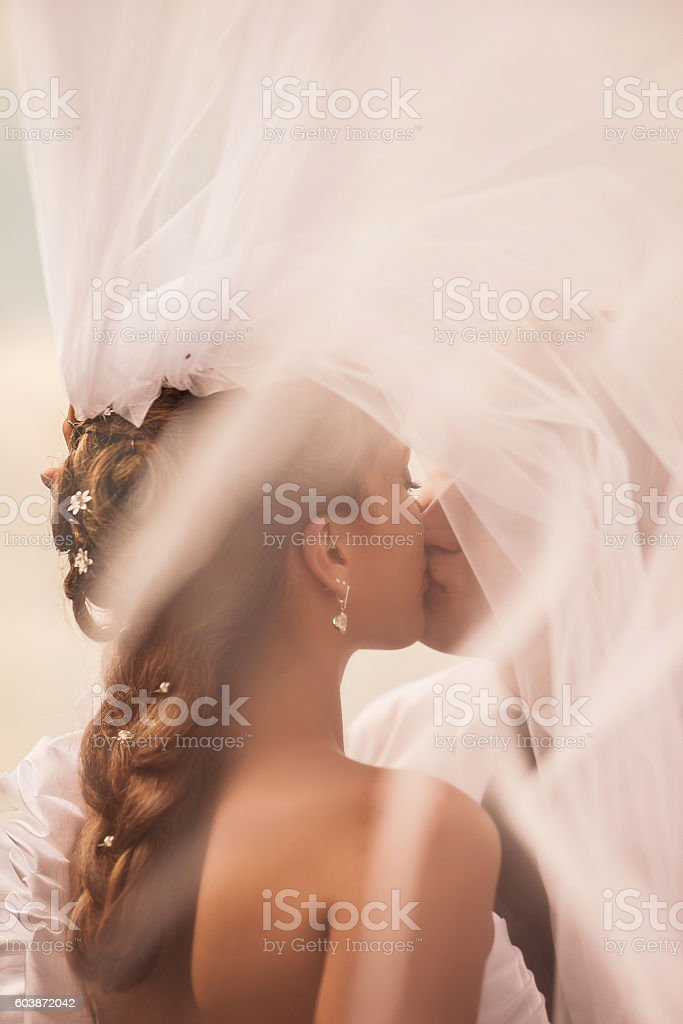 The bride kisses the groom under the veil stock photo