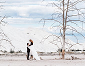 istock The bride stands on the dried-up stump and hugs the groom on the background of the desert with withered trees 957459324