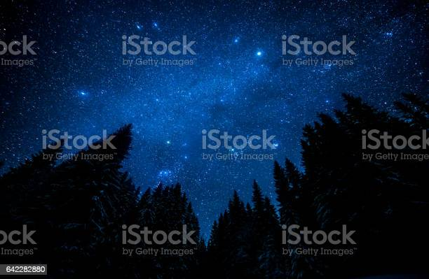 The bright starry sky in the night forest picture id642282880?b=1&k=6&m=642282880&s=612x612&h=vlexe3i fx8pzmcefmft2ok0niasg6oatf9eyj7wpv4=