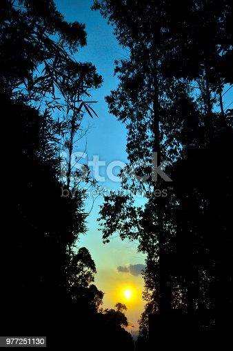 istock The Brightness 977251130