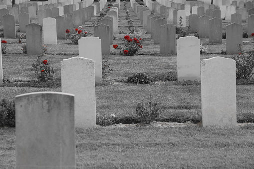 The British Cemetery of Ramle , Israel
