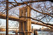 The Brooklyn Bridge, shot from lower Manhattan