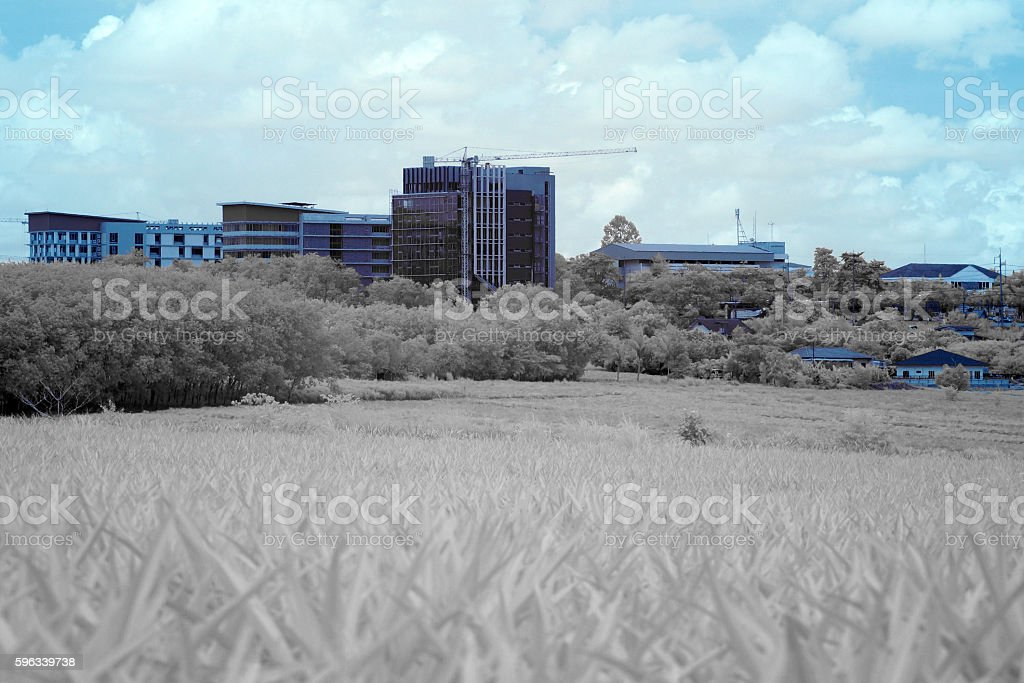 The building in near infared style royalty-free stock photo