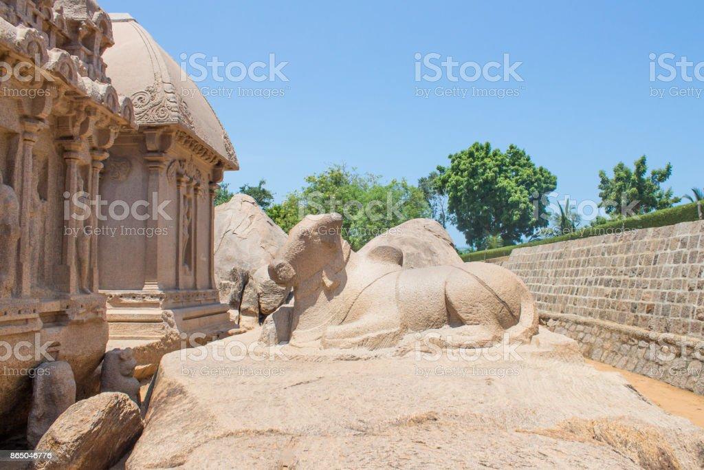 The bull behind Arjuna Ratha, Five rathas monument, Mahabalipuram, Tamil Nadu, India stock photo