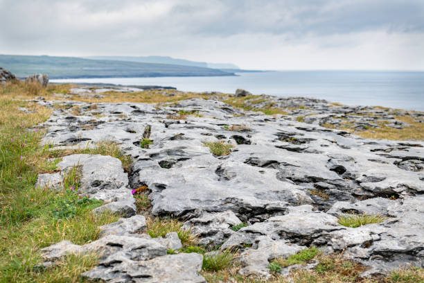 The Burren Limestone Pavement, County Clare, Ireland The Burren Limestone Pavement, County Clare, Ireland county clare stock pictures, royalty-free photos & images